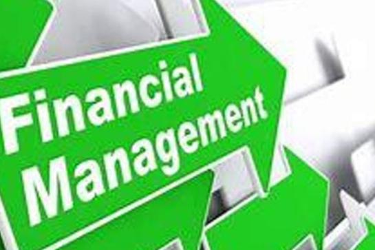 Effective Financial Management - Bellerive