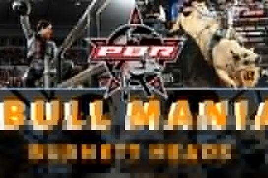 PBR Bull Mania