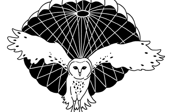 Parachute Tour - 2020