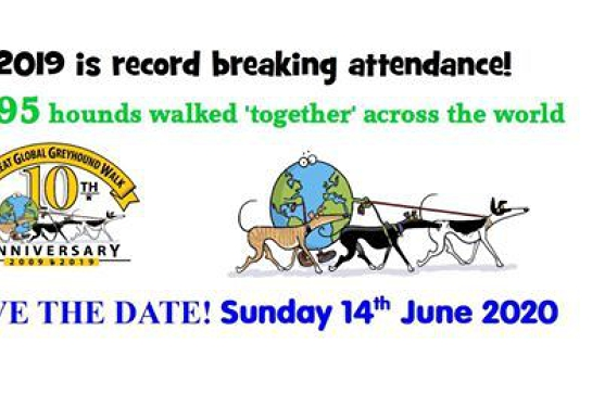 2020 Great Global Greyhound Walk Hobart Leg