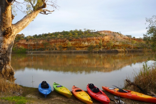 Guided Sunset Kayak Tour, Riverland South Australia