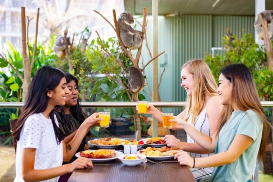 Breakfast with the Koalas at WILD LIFE Sydney Zoo