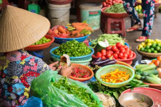 Webinar: Postcard from Vietnam - Market Update and Opportunities for Tasmanian Exporters