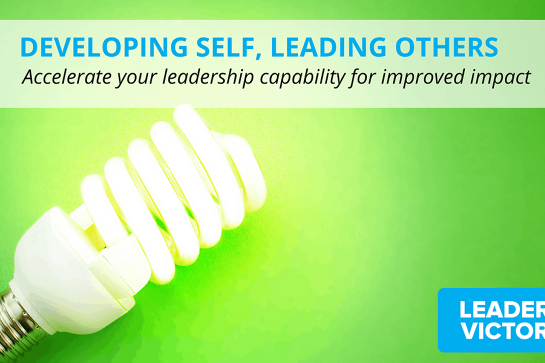 2020 Developing Self, Leading Others Series 2