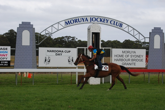 Narooma Cup Race Day June