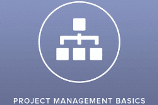 Project Management Basics 2 Days Virtual Live Training in Sydney