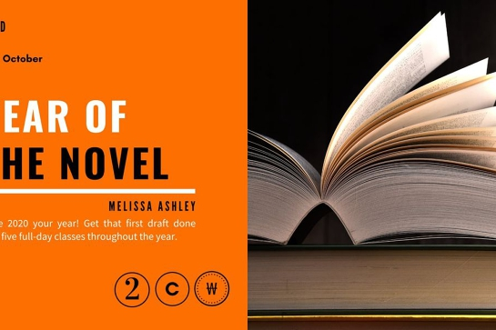 Year of the Novel with Melissa Ashley
