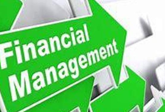 Effective Financial Management - Huonville