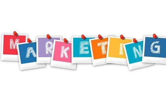 Marketing and Branding for International Success