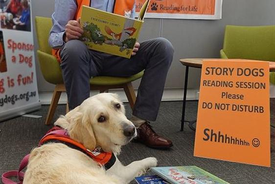 Story dogs reading program - Rosebud Library